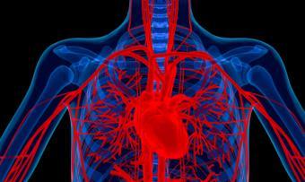 Palpitations and Celiacs