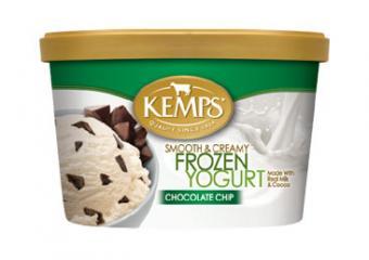 Kemps chocolate chip frozen yogurt