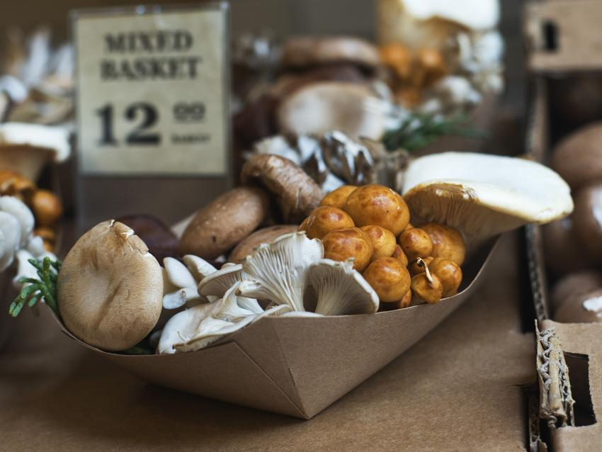 https://cf.ltkcdn.net/gourmet/images/slide/219927-850x638-mixedmushrooms.jpg