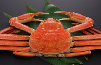 Cooking Snow Crab Legs
