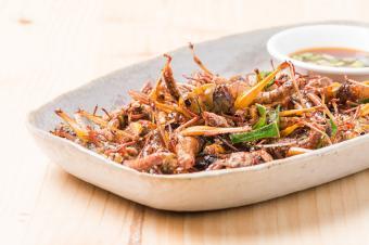 https://cf.ltkcdn.net/gourmet/images/slide/191279-850x566-Fried-Grasshopper.jpg
