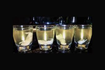 https://cf.ltkcdn.net/gourmet/images/slide/191287-850x566-Mouse-Rice-Wine.jpg