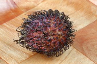 https://cf.ltkcdn.net/gourmet/images/slide/219844-850x567-rambutan-fruit.jpg