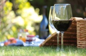 Elegant_picnic300.jpg