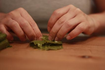 folding grape leaves