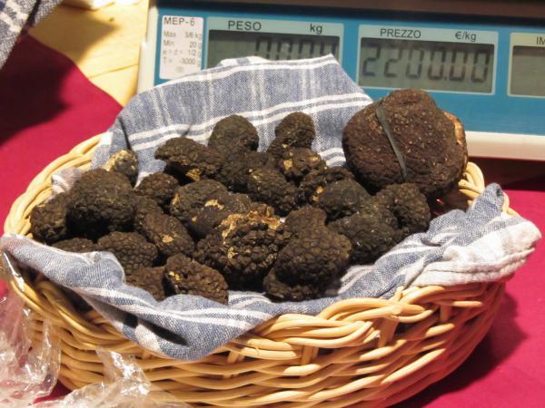 Italian black truffles