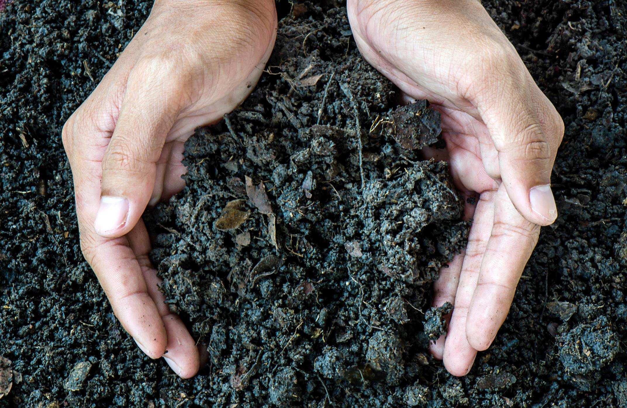 10 Ways to Conserve Soil | LoveToKnow