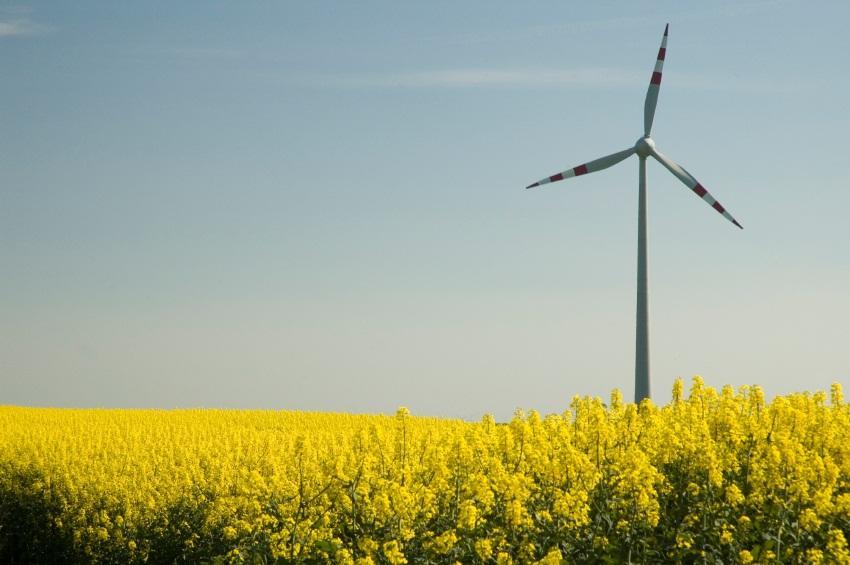 https://cf.ltkcdn.net/greenliving/images/slide/131151-850x565r1-energy-solutions.jpg