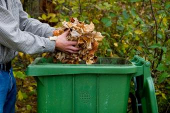 Recycle Leaves and Grass