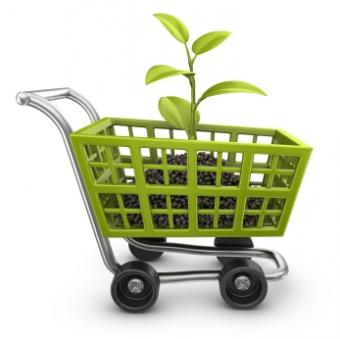 Eco-Friendly Retail Stores