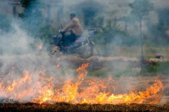 https://cf.ltkcdn.net/greenliving/images/slide/144145-850x563r1-Fires-Create-Pollution.jpg