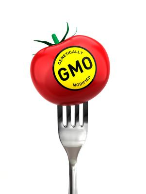 Genetically Modified Food Labeling Issues