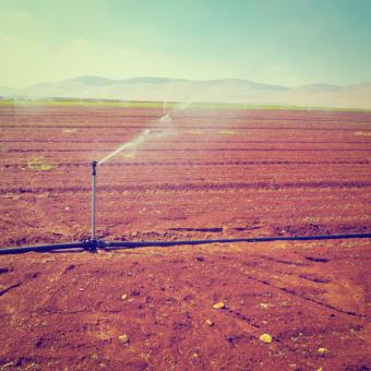 Irrigating bare field