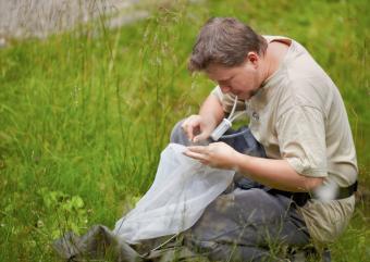 Biologist working the field
