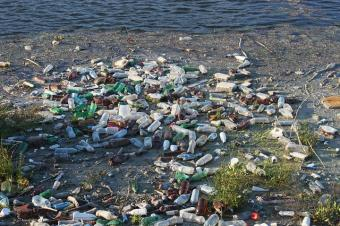 watershed pollution