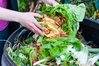 Composting food leftovers
