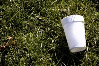 How Styrofoam is Bad for the Environment