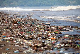 Solutions for Ocean Pollution