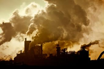 Poems About Pollution
