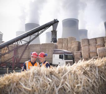 Biomass fuel facility