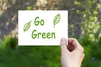 59 Go Green Slogans