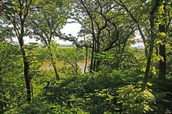 Missouri River Forest