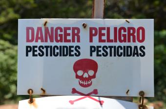 Dangers of Pesticide Use