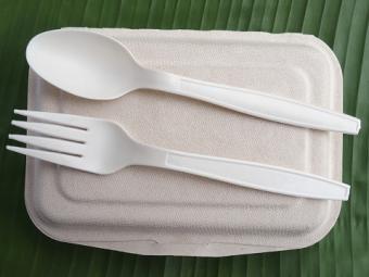 bioplastic spoon fork lunch box