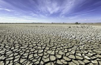 What Are the Main Natural and Human Causes of Drought?