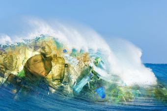 Ocean Pollution Causes