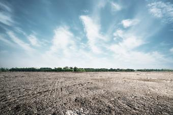 Wide view of dirt field