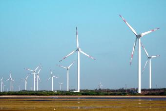 Renewable Energy Consultant