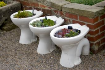 Toilets As Yard Decoration