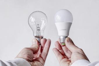 Incandescent light bulb versus LED lamp