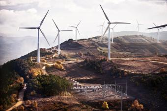 Wind farm and electrical substation