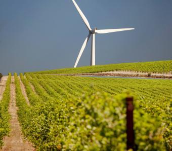 https://cf.ltkcdn.net/greenliving/images/slide/252168-850x744-1-examples-sustainable-development.jpg