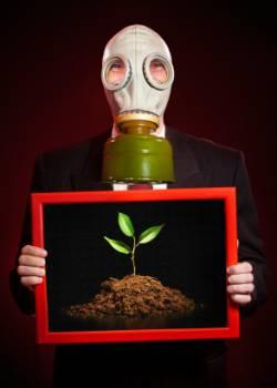 Man wearing gasmask holding framed plant