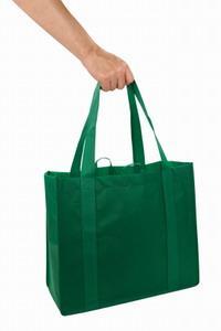 Green_Shopping_Bag.jpg
