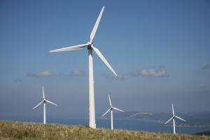 Wind Farm Information