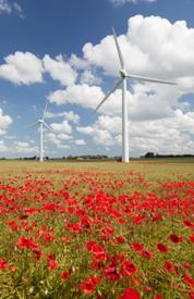 Locust Ridge Wind Farm in Pennsylvania