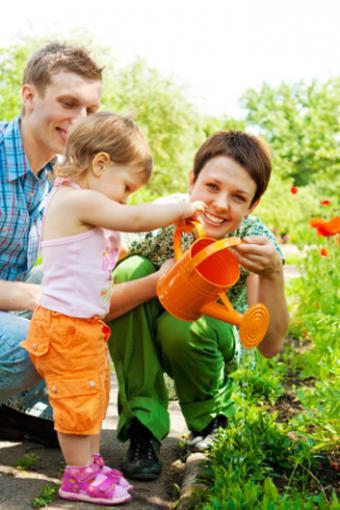 https://cf.ltkcdn.net/greenliving/images/slide/88421-353x529-kr_gardening_.jpg