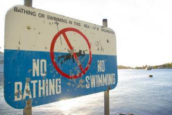https://cf.ltkcdn.net/greenliving/images/slide/88443-693x464-Polluted_Lake.jpg