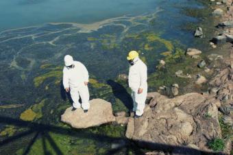 https://cf.ltkcdn.net/greenliving/images/slide/88444-693x461-EPA_Cleanup.jpg