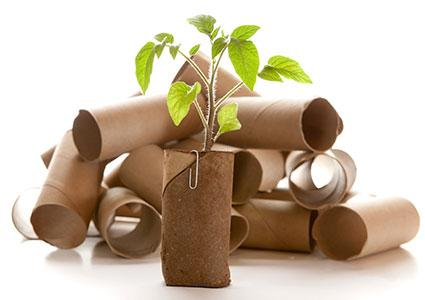 Ways to Recycle Toilet Paper Rolls
