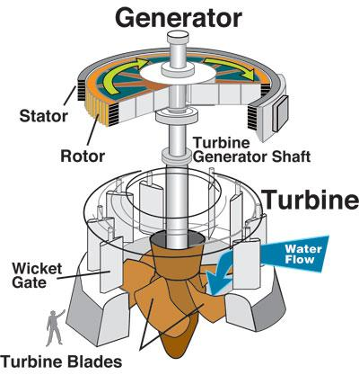 Water turbine and generator
