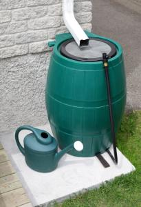 rainwater filtration