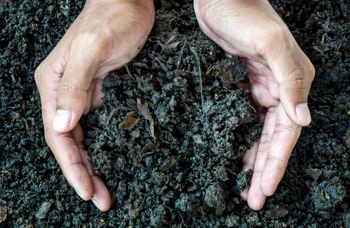 the importance of soil quality and conservation Soil conservation is one of those critical  with good quality soil you can do things like grow a medicinal food  the importance of soil conservation.