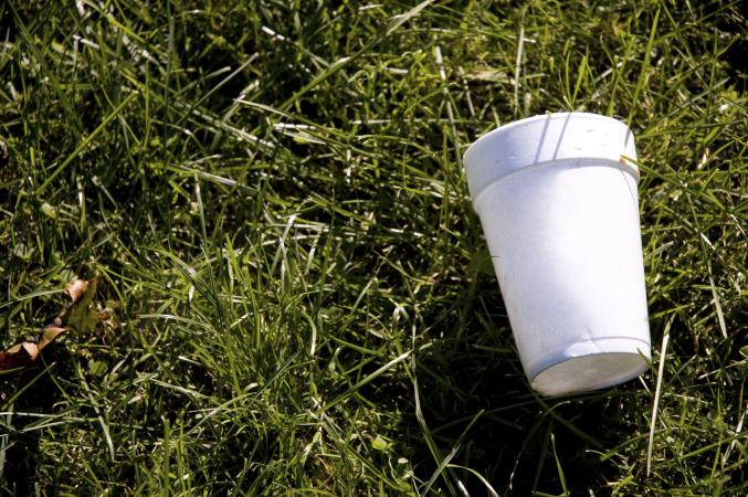 How Styrofoam is Bad for the Environment | LoveToKnow