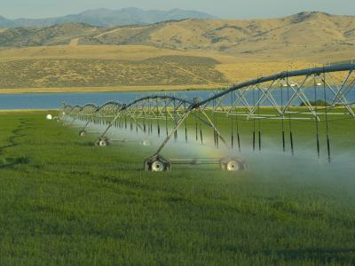 Crops being irrigated on a Utah farm