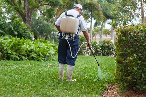 Pest control technicia